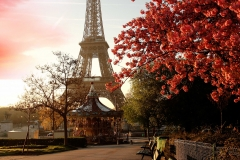 _Beautiful_park_on_a_background_of_the_Eiffel_Tower_058414_