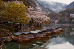 1_sakura-garden-natural-landscape2